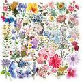 50 PIÈCES Jolie Ins Style Stickers Fleurs Cadeau Pour Fille Plante Fleur Autocollant De BRICOLAGE