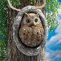Plant Stands Tree Face Garden Ornaments Outdoor Garden Face Tree Decoration Whimsical Sculpture Resin Statues for Trees, Fences and Walls (Color : Owl)