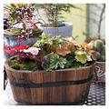 XJJUN Barrel Planter, Oval Solid Wood Bonsai Planter, Garden Vegetable Pot, Planting Flower Box, for Balcony, Garden, Courtyard (Color : Brown, Size : 25X14X30CM)
