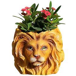 2021 Cute Plant Pot,Lion/Dog/Owl Mini Garden Planter Pots for Succulent,Floral,Low Herbaceous Plant,Best Gift for Mother,Adult,Kids (Lion)