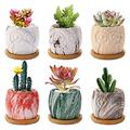6 Pack Succulent Planter Pots 2.5 Inch Small Marbling Ceramic Flower Pot Cute Owl Cactus Bonsai Plant Holder Container with Bamboo Tray Drainage Hole for Home Office Desk Garden Decoration