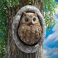 Owl Tree Face Decor Outdoor Decoration, Bark Ghost Facial Features Owl Tree Hugger, Garden Peeker Yard Art, Funny Easter Creative Props Yard Art Decoration (Owl Decoration A)