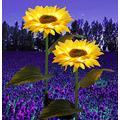 Dekzked 2Pack Solar Sunflower Lights, Garden Lights Outdoor,Waterproof Landscape Decoration Lighting,Illuminated Yellow , LED Lawn Lights for Pathway Patio Yard Deck Walkway (Sunflower)