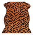 JIAHE115 HJBH Home Decor Zebra Rugs/Carpets, Carpet Doormat Hall Carpet Crawler, Orange, 70 110CM HJCA (Color : Orange, Size : 70110CM)