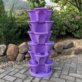 WSCQ A Set of 6 Vegetable Strawberry Stackable Planters, Stand Stacking Planters Strawberry Planting Pots with a Tray Multi Layer Balcony Stacking Melon Fruit Planting Pot,Purple