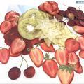 Mélange de tranches de Fruits exotiques séchés et pressés, 22 pièces, plantes herbivores pour