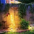 Solar Shower lamp Solar Energy Star Type Shower Garden Art Light Decoration Outdoor Gardening Lawn Lamp Creative Solar Light (with Shelf)