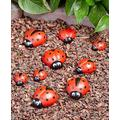 Ladybug Garden Stones - Decorative Outdoor Ornaments - Set of Nine Decorative Stones for Garden Garden Decor Outdoor Decor Patio Decor Yard Decor Outdoor Decorations for Patio Decorative Stones