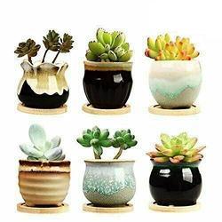 """6PCs 2.5"""" Flower Pot Ceramic Succulent Planter Pots with Drainage for Garden Set Outdoor planters Planter Boxes Outdoor Planter Box Outdoor Planter Small Planter Large planters Deck Planter"""