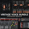 Cherry Audio Vintage Voice Bundle