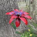 HTDBKDBK Metal Daylily Flower Garden Stakes Decor,Metal Flowers Outdoor Decor Stake Yard Art Decoration,Garden Metal Plant Flowers Stick Spring Lawn Yard Patio Decor