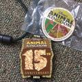 Disney Accessories | Animal Kingdom Lanyard And Pin | Color: Red | Size: Os