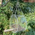 Window Bird Feeder with Strong Extra Suction Cups& Hanging Chains Bird feeders for The Garden Bird feeders Stations with Stand Bird Feeder Hanging Bird Feeder Bird feeders Hanging Squirrel Proof Bird
