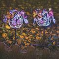 DYHG Solar Garden Lights Butterfly Solar Lights Outdoor Solar Lights Outdoor Garden with Butterflies Decor Garden Lights Solar Powered Waterproof Yard Lights Outdoor Solar Powered 2 Pack