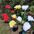 Flower Solar Garden Lights Outdoor Decorative,Flower Solar Lights Outdoor Garden,Automatic Charging Solar Garden Stake Lights,LED Solar Landscape Lighting for Garden, Patio Lawn Path