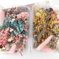 1 boîte vraie fleur séchée plante pour aromathérapie bougie résine époxy pendentif collier