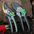 TIMAW Garden Shears, Pruning Branches, Fruit Trees, Gardening Shears, Floral Pruning Shears, Pruning Shears (Size : Flagship Silver Ring Snake)
