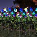 KHBNHJ 2 Pcs Solar Garden Stake Lights, Waterproof Tulip Flower Light Solar Powered Lights Outdoor, LED Solar Decorative Landscape Lights for Garden Yard Path, Purple