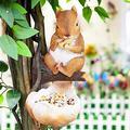 Bird Feeder Tree Outdoor Decor, Squirrel Hug Tree Garden Sculptures Bird Feeders, Raccoon Garden Ornaments Hanging on The Tree Bird Feeder, Garden Sculptures & Statues for Garden Yard Decor