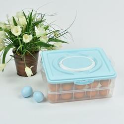 Omniware Omnlware 40 Eggs Rectangle Plastic Food Storage Container w/ LidPlastic, Size 4.7 H x 8.5 W x 10.8 D in | Wayfair 3420232