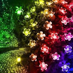 Arlmont & Co. 2 Pack Solar Flower Strings Lights, Solar Fairy Lights 23 Feet 50 Led Cherry Blossoms String Lights For Outdoor, Home, Lawn, Wedding