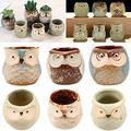 6 Pcs Ceramic Mini Pot for Succulent Plant Bonsai Flower Cactus Flower Pots Garden Supplies pots for Plants Planter pots Garden pots Herbs pots Plant Pot Flower pots Flower pots Outdoor