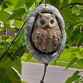 Owl Tree Statue Realistic Garden Owl Figurine Resin Outdoor Fake Owls Sculpture Hanging Ornament to Scare Birds Yard Art Decoration, Whimsical Tree Face Yard Garden Decoration