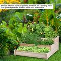 3 Layer Planting Nursery Tool No Paint Plant Nursery Garden Bed Wooden Garden Planter for Vegetables Flowers Planter Patio
