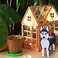 Dog Planter, Cute Garden Animal Shaped Cartoon Succulent Planter, Wooden French Bulldog Planter, Chihuahua Dog Planter, Cute Dog Design Herb Succulents Flower Pot for Garden Decoration (E)