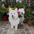 Dog Planter, Cute Garden Animal Shaped Cartoon Succulent Planter, Wooden French Bulldog Planter, Chihuahua Dog Planter, Cute Dog Design Herb Succulents Flower Pot for Garden Decoration (B)