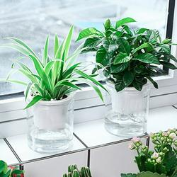 Cheers.US Self Watering Planter, Clear Plastic Automatic-Watering Planter Self Watering Pots for Indoor Plants Flower Pot for All House Plants, Succulents, Herb, African Violets