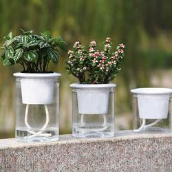 Windfall Self Watering Planter, Clear Plastic Automatic-Watering Planter Self Watering Pots for Indoor Plants Flower Pot for All House Plants, Succulents,Self Watering Hydroponic Flower Pot Planter