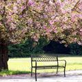 "47"" Patio Porch Garden Bench Cast Aluminum Outdoor Chair Love Seat Yard Benches"