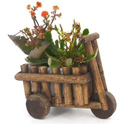 Wooden Succulent Planter Cute Potted Plant Holder Desktop Flower Pot Creative Office Decor Mini Wheel Barrow Planter for Indoor Windowsill Countertop