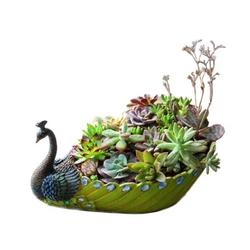 Ducklingup Peacock Succulent Planter, Handmade Large Flower Pot with Hole