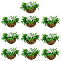 10 Pcs Fence Hanging Planters Metal Wall Planter Hanging Plant Basket Metal Hanging Planter with Coconut Liners for Planters, Wire Large Hanging Planters for Outdoor Plants for Garden