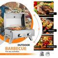 Tabletop Stainless Steel 2-Burner Gas Grill Portable 2000 BTU BBQ Grid