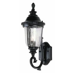 Trans Globe Lighting 4021 1-Light Up Lighting Outdoor Wall Sconce from the Outdoor Collection