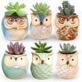 6 Pcs 2.5 Inches Owl Pots, Little Ceramic Succulent Bonsai Pots with a Hole - Pack of 6