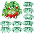 10-Pack Strawberry Supports, Adjustable Strawberry Growing Racks Plant Climbing Rack Vine Pillar Garden Stand Balcony Vegetable Rack for Keeping Fruit Elevated to Avoid Ground Rot