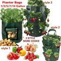 1/3/5/7/10 Gallon Potato Strawberry Planter Bags Gardening Vegetables Grow Bag Planter Bags Breathable Bag for Potato, Carrot & Onion