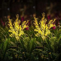 Neporal Garden-Solar-Lights-Outdoor-Decorative, 2 Pack Solar Flowers Lights Garden Lights Solar Powered Ip65 Waterproof Fiber Optic Solar Garden Stake Lights For Yard Patio Garden Pathway
