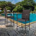 TNBIU 2pcs Wicker Rattan Chair Rattan Sofa Chaise Lounge for Garden Backyard Patio Outdoor Furniture