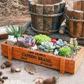Succulent Planter Box Decorative Rustic Wooden Rectangular Plant Container Garden Planter Vintage Flower Pot for Indoor Outdoor Plants Vegetables Herbs Flowers for Office, Home