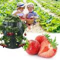 DIY Plant Grow Bags Potato Strawberry Planter Bags, 5/7/10 Gallon Growing Bags Garden Vegetable Planter PE Cloth Planting Container Bag