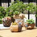 Yinrunx Cartoon Cute Animal Plant Pots Plant Pot Pots For Plants Flower Pot Flower Pots Outdoor Flower Pots Flower Pots Indoor Flower Pots Indoor Decorative Room Decor Garden Decor Home Decor