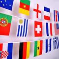 Kernelly National Flag Country Team String Flags Polyester Football Garden Party Decor Flag Banners for fence National Flag Country Team String Flags 7.9x11 inch