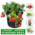 5 Gallon 4 Pockets Strawberry Planting Bags Grow Bags Planter Fabric Pot Premium Breathable Cloth Bags for Strawberry/Plant Container with Handles and Visualization Pockets