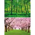 GREAT ART Set of 2 XXL Posters - Forest Trees - Green Forest and Cherry Tree Avenue Wall Picture Decoration Nature Summer Spring Blossoms Wallpaper Photo (55 x 39.4 Inch / 140 x 100 cm)