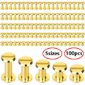 TSV 100Pcs Screw Posts, Carbon steel Screws Binding Screw Leather Screw Nail Rivet Button Solid Belt Tack Screw, 1/4, 3/8, 1/2, 9/16, 11/16 Inch (Silver/Gold)